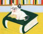 本屋の猫本さん、よく寝ます